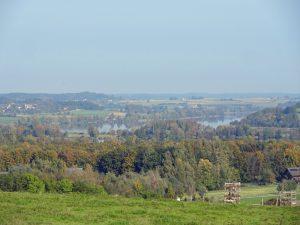 Der Tachinger See